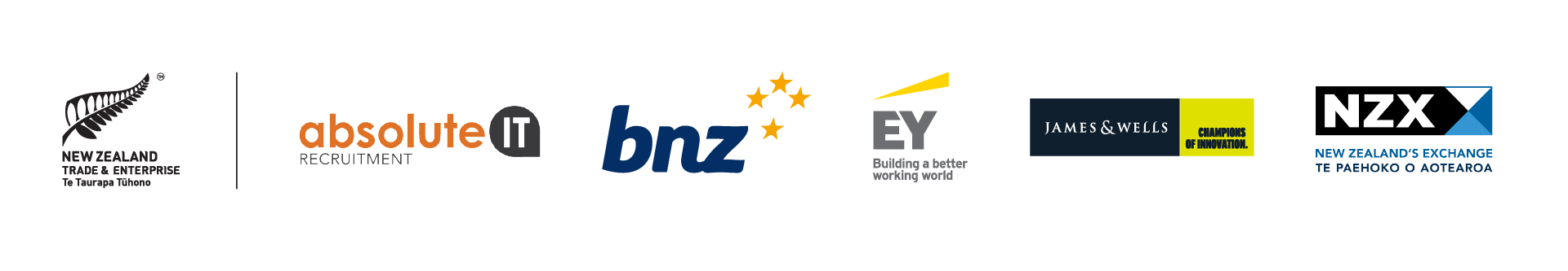 New Zealand Technology Investment Network Sponsors